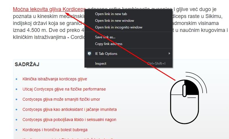 dofollow linkovanje desni klik inspect element